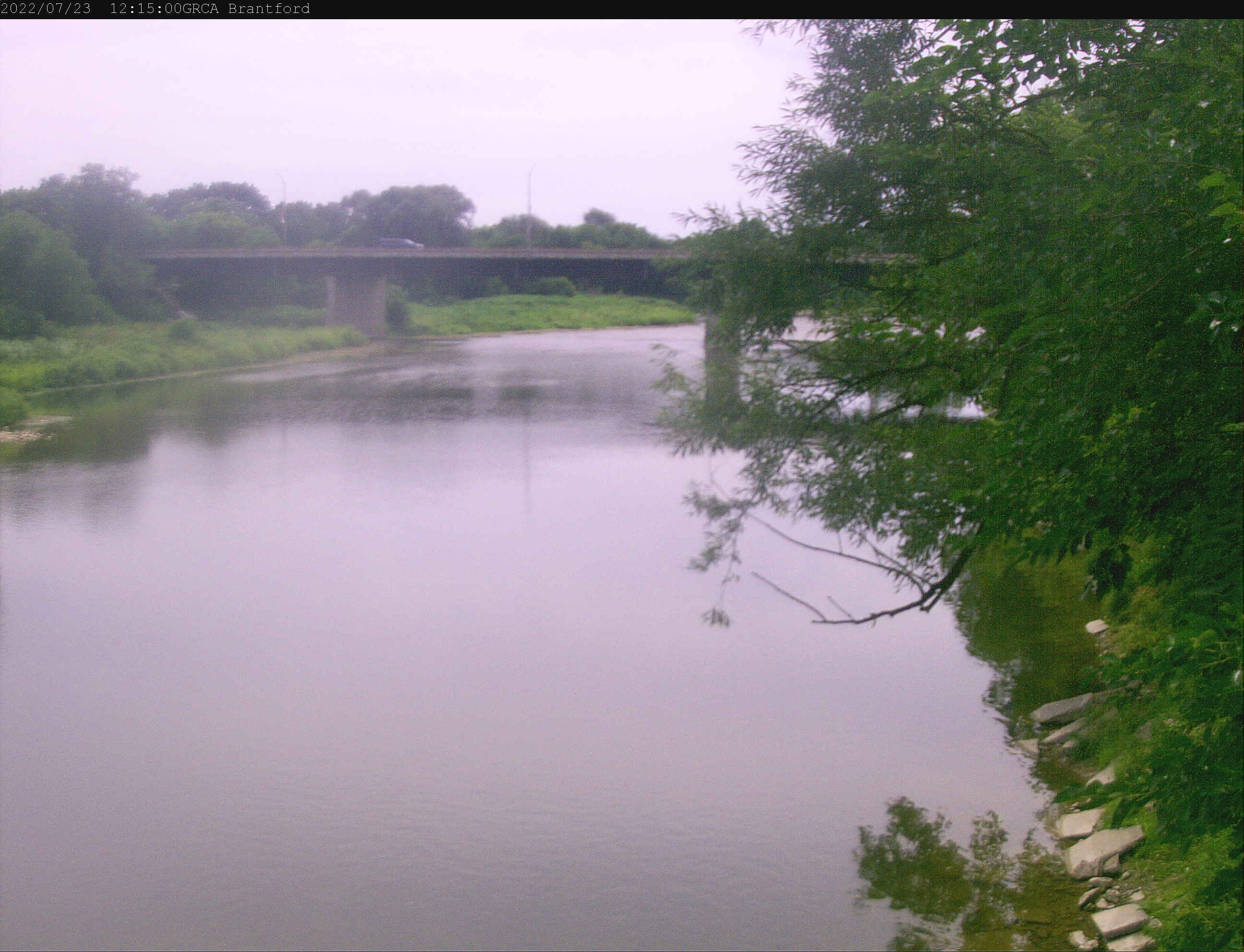 Brantford river cam still photo